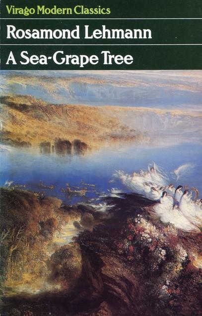 a sea grape tree