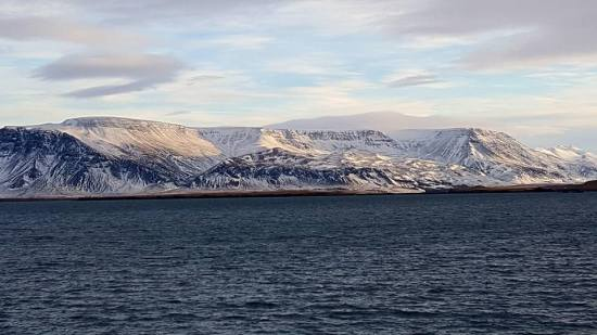 fromharbour-reykjavik